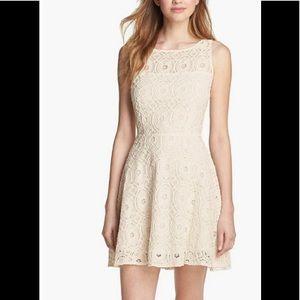 BB Dakota lace cream fit and flare dress